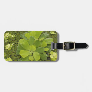 Eco green tags for bags