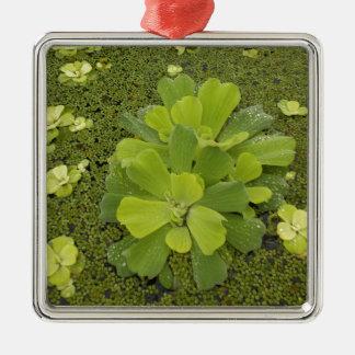 Eco green metal ornament