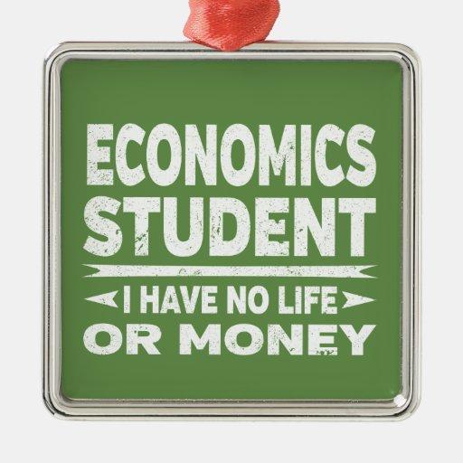 Economic College Student I Have No Life No Money Metal Ornament
