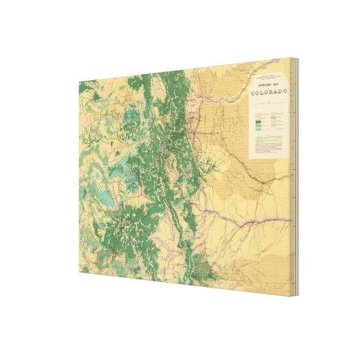 Economic Map of Colorado Stretched Canvas Prints