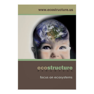 Ecostructure Poster 24x36