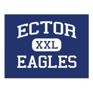 Ector - Eagles - Junior High School - Odessa Texas Postcard