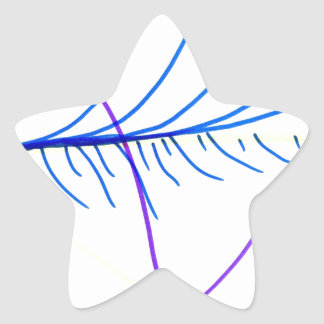 Ecuación de campo calcomanías forma de estrella personalizadas