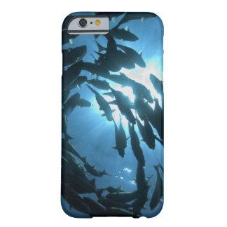 Ecuador, Galapagos archipelago, Wolf Island, Barely There iPhone 6 Case
