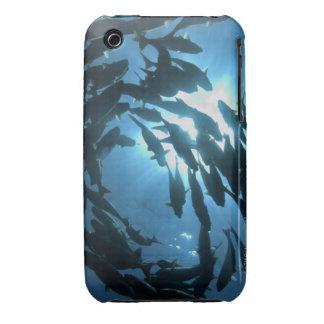 Ecuador, Galapagos archipelago, Wolf Island, iPhone 3 Cover