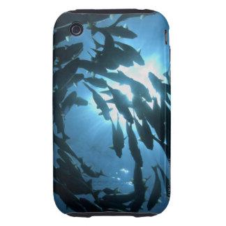 Ecuador, Galapagos archipelago, Wolf Island, iPhone 3 Tough Case