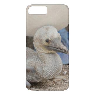 Ecuador, Galapagos, Espanola, Punta Suarez iPhone 8 Plus/7 Plus Case