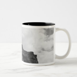 Ecuador, Galapagos Islands, Darwin Island, Waves Two-Tone Coffee Mug
