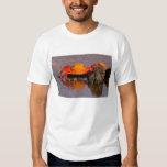 Ecuador, Galapagos Islands National Park, 2 Shirts