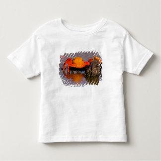 Ecuador, Galapagos Islands National Park, 2 Toddler T-shirt