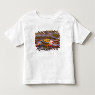 Ecuador, Galapagos Islands National Park, 3 Toddler T-shirt