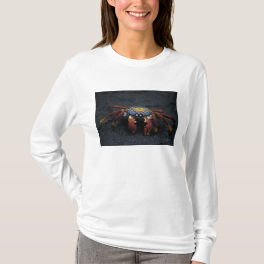 Ecuador, Galapagos Islands, Sally Lightfoot T-Shirt