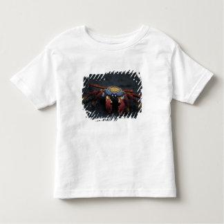 Ecuador, Galapagos Islands, Sally Lightfoot Toddler T-shirt