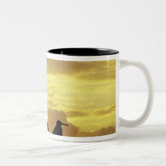 Ecuador, Galapagos Islands. Silhouette of Two-Tone Coffee Mug