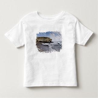 Ecuador, Galapagos, Santiago aka James). 3 Toddler T-shirt
