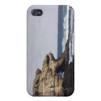 Ecuador, Galapagos, Santiago aka James). iPhone 4/4S Cases