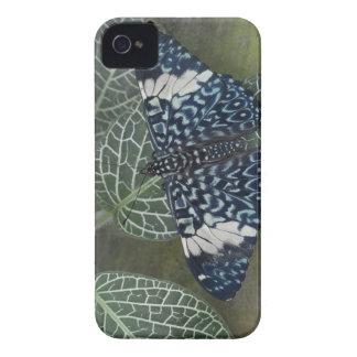 Ecuador, Orellana, Napo River. Hamadryas iPhone 4 Case-Mate Case