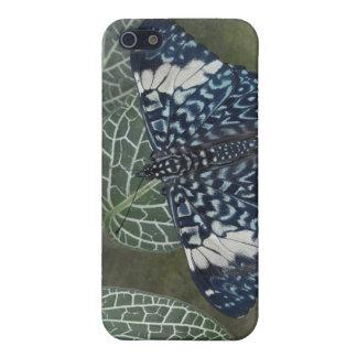 Ecuador, Orellana, Napo River. Hamadryas iPhone SE/5/5s Cover