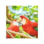 Ecuadorian Parrots at Zoo, Guayaquil, Ecuador Canvas Print