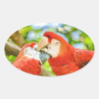Ecuadorian Parrots at Zoo, Guayaquil, Ecuador Oval Sticker