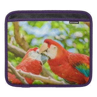 Ecuadorian Parrots at Zoo, Guayaquil, Ecuador Sleeve For iPads