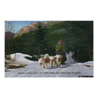 Ed Clark's Eskimo Dog Ranch, Dogsledding Poster