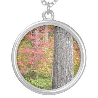 Ed Sutton - árbol de la caída Colgante Redondo