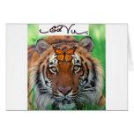 Ed Vu Tiger Monarch butterfly Greeting Card