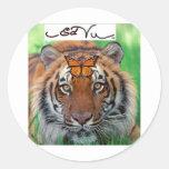 Ed Vu Tiger Monarch butterfly Classic Round Sticker