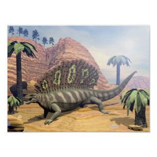 Edaphosaurus dinosaur walking in the desert poster