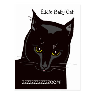 Eddie Baby Cat Postcard