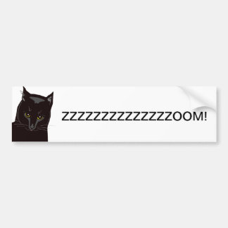 "Eddie Baby Cat ""ZZZZZOOM!"" Bumper Sticker"