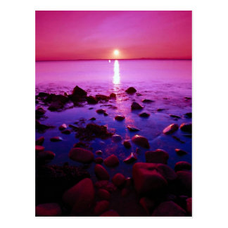 Eddy Lighthouse, Grand Manan Island, New Brunswick Postcard
