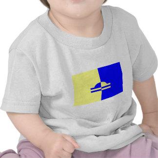 Ede, Netherlands flag Tee Shirts