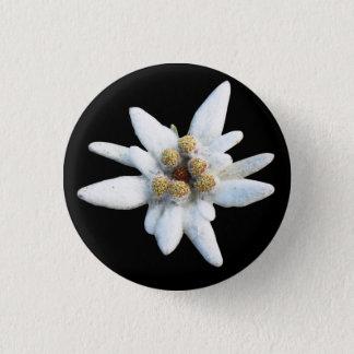 Edelweiss Alpine Flower Button
