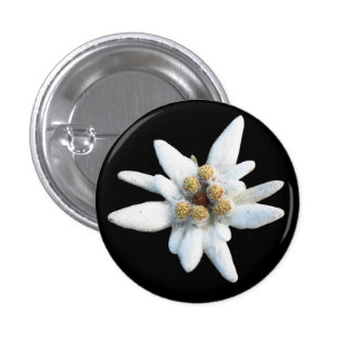 Edelweiss Alpine Flower Button