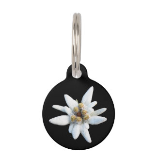 Edelweiss Bloom Pet Name Tag