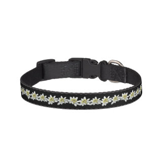 Edelweiss Dog Collar