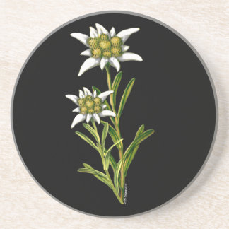 Edelweiss Floral Coaster