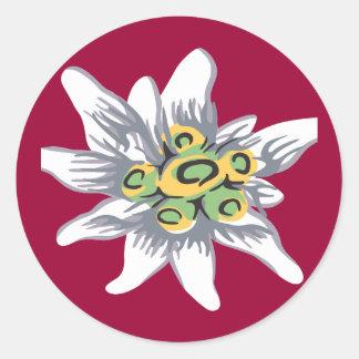 Edelweiss flower classic round sticker