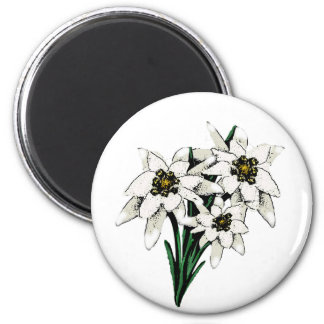 Edelweiss Flowers 2 Inch Round Magnet