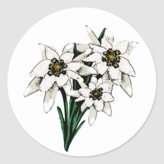 Edelweiss Flowers Classic Round Sticker