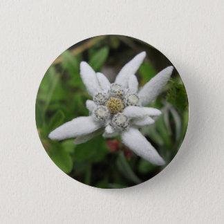 Edelweiss Pinback Button