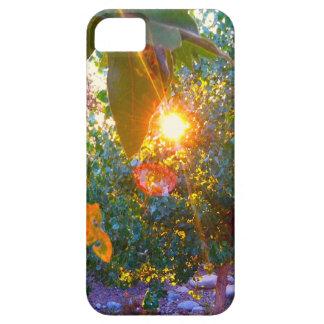 Eden Sunset iPhone 5 Case