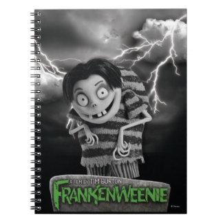 Edgar Notebook
