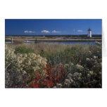 Edgartown Lighthouse and flowers Martha's Vineyard Cards