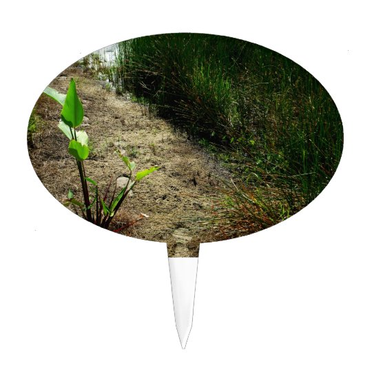 Edge of pond reed and single plant cake topper