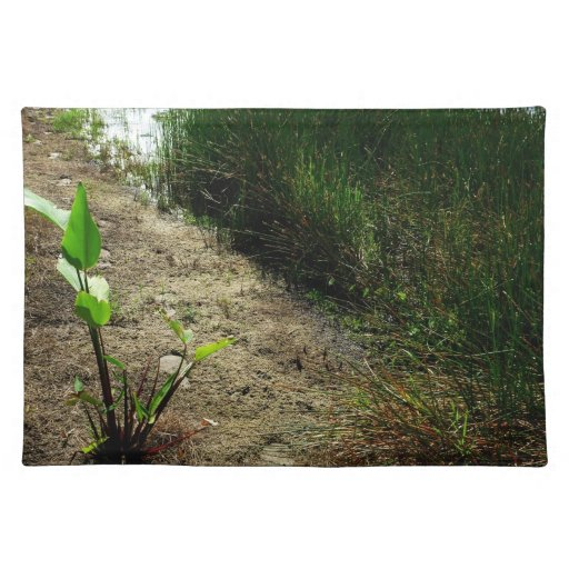 Edge of pond reed and single plant place mats