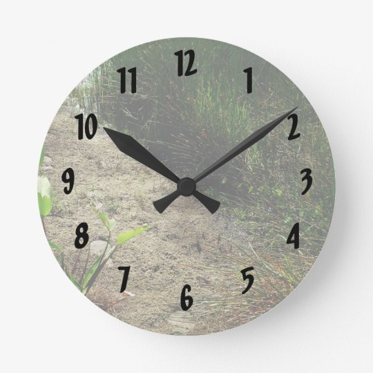 Edge of pond reed and single plant round clock