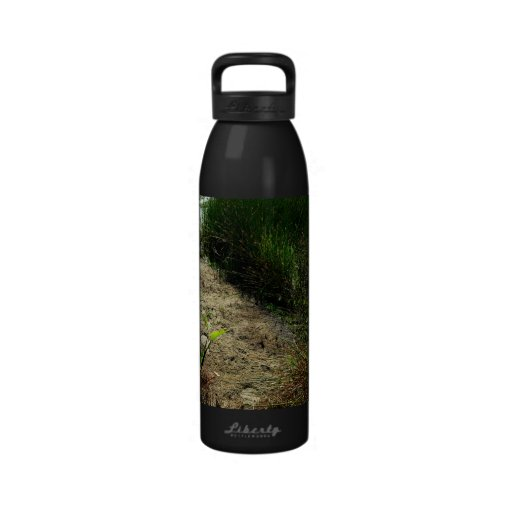 Edge of pond reed and single plant reusable water bottle